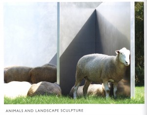 edward-tufte-animals-and-landscape-sculpture